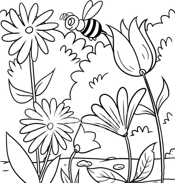 insekten ausmalbilder gratis  ein bild zeichnen