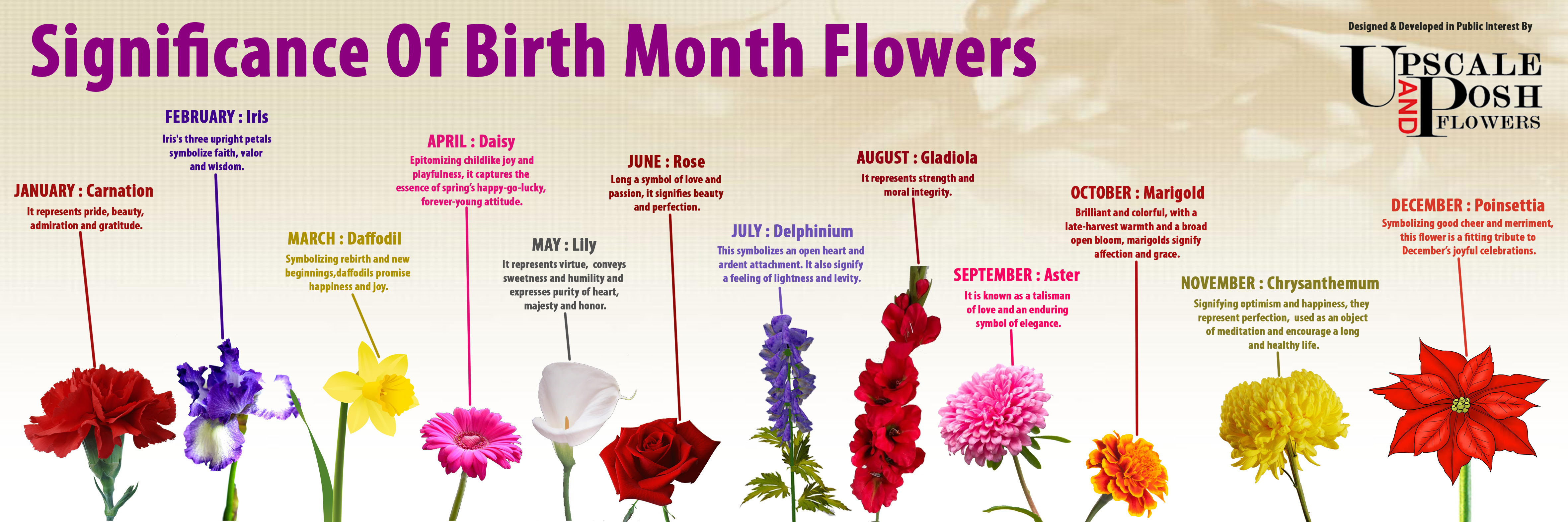Flowers By Month Explanation