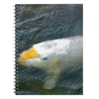 Goldfish In Lake Spiral Note Books