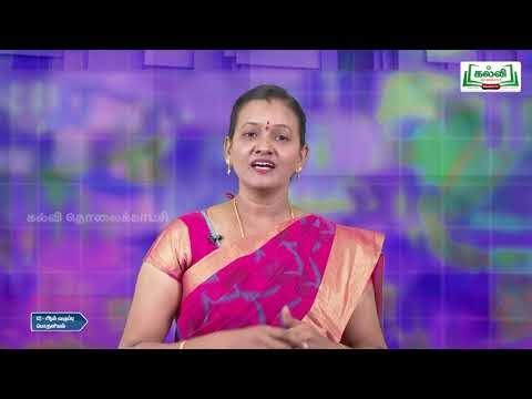 12th Economics பன்னாட்டு பொருளியல் அத்தியாயம் 7 Kalvi TV