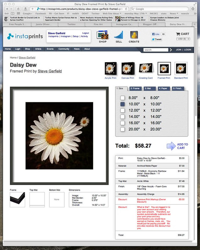 Daisy Dew Framed Print By Steve Garfield