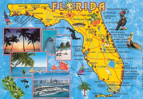 Fun Ways To Learn About Florida For Kids