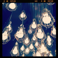Bulbs!  I want this in my hallway.