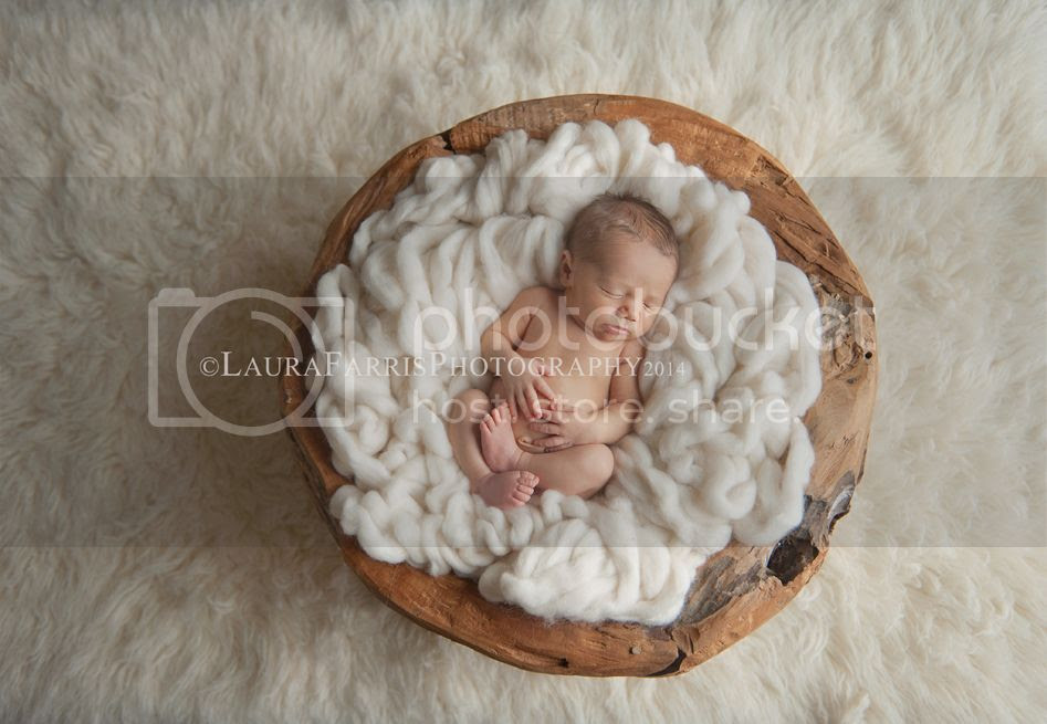 photo boise-idaho-newborn-baby-photographer_zps07a5190c.jpg