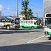 20130930-168YagiShingu-3
