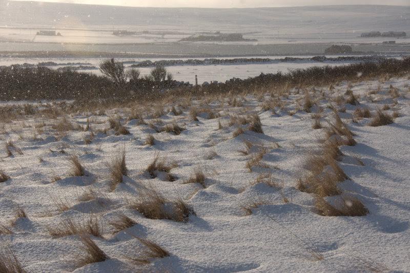 File:Sunshine and snow, Halligarth, Baltasound - geograph.org.uk - 1691774.jpg