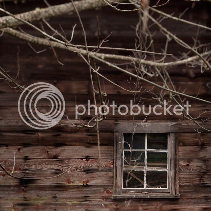 photo window_zpsf047f49c.jpg
