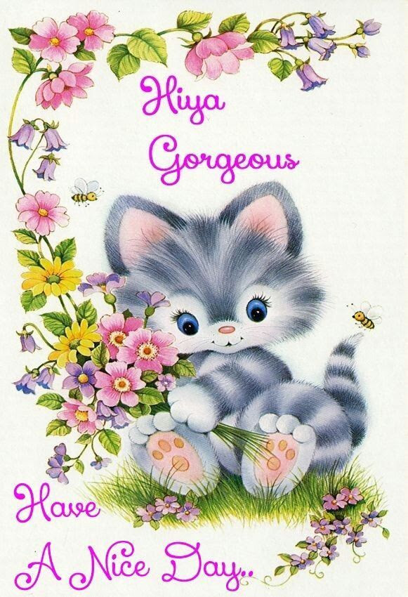 Hiya Gorgeous Have A Nice Day Pictures Photos And Images For