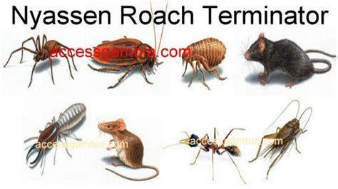Nyassen Roach Terminator Gambia Co. Ltd.
