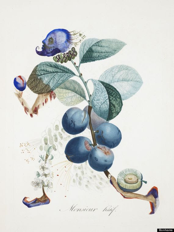 dali botanical art
