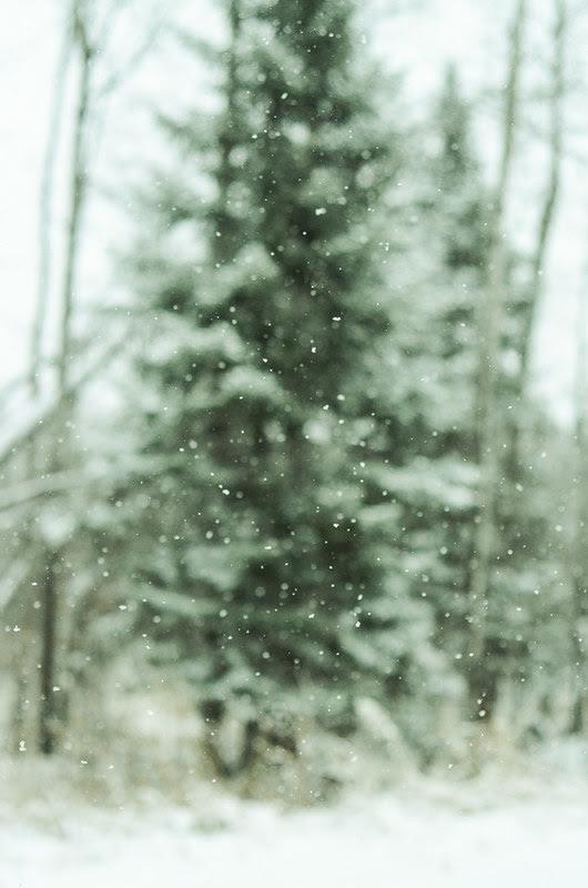 Snowflake Bokeh
