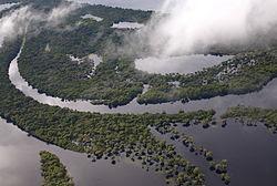 Fotografia aérea de uma pequena parte da Amazônia brasileira.