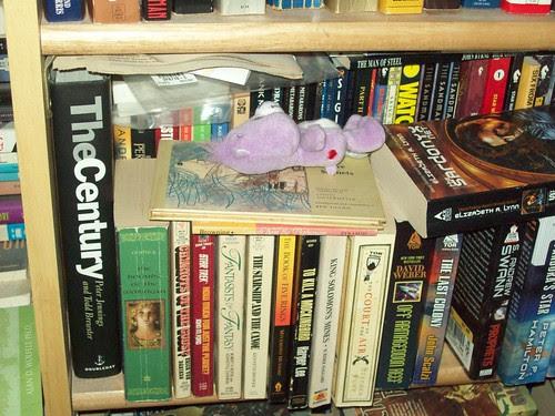 Bookshelves 9