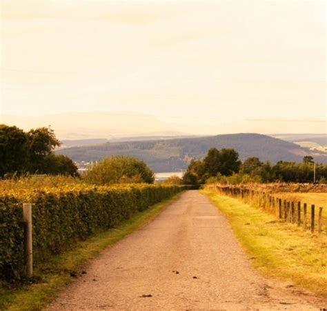 Festival Wedding Venue ? Bogbain Farm In Scotland   Weddbook