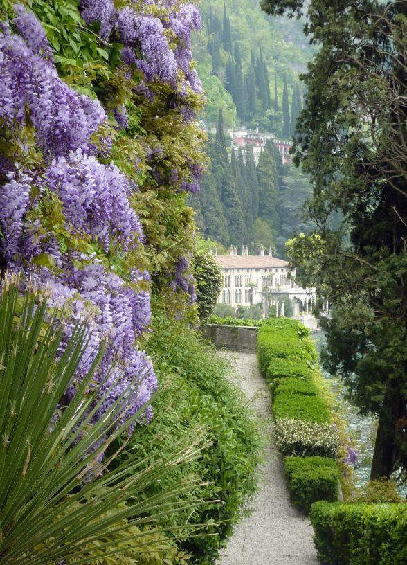 Villa Monastero gard Flowers Garden Love