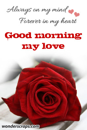 Good morning babe i hope you unblock me today i will miss til good morning babe i hope you unblock me today i will miss til you do i love you relationship pinterest relationships thoughts and qoutes voltagebd Images