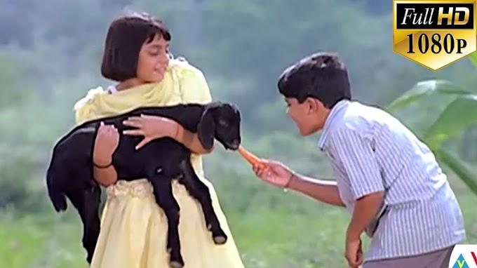Tuneega Tuneega Song Telugu Lyrics | Manasantha Nuvve Telugu Lyrics | Uday Kiran, Reema Sen