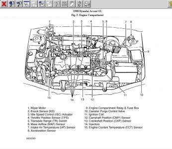 2008 Hyundai Accent Engine Diagram Wiring Diagram Editor A Editor A Amarodelleterredelfalco It