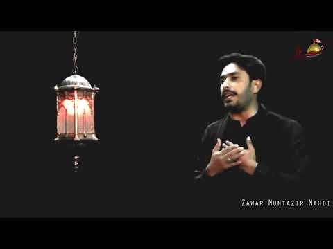 Shair Madina Teda Manzar Ajeeb Ha | Zawar Muntazir Mehdi Noha Janab Syed...