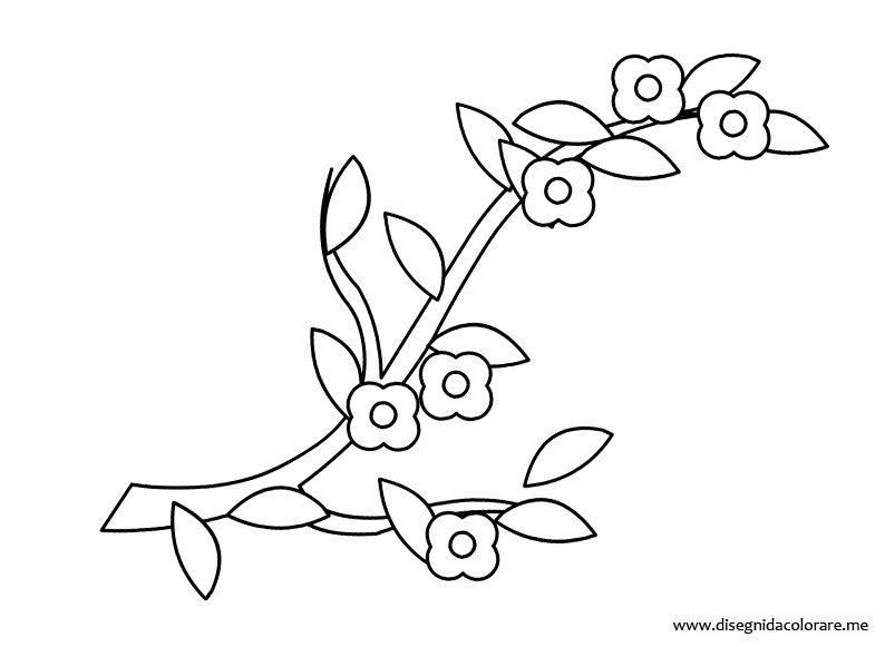 Disegni Fiori Pesco Coloring And Drawing