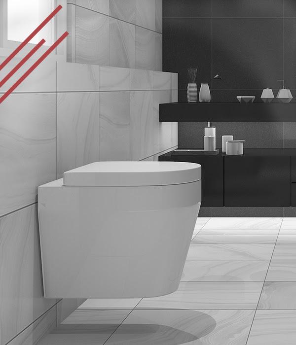 Een Toilet Wc Laten Plaatsen In En Om Maasbommel