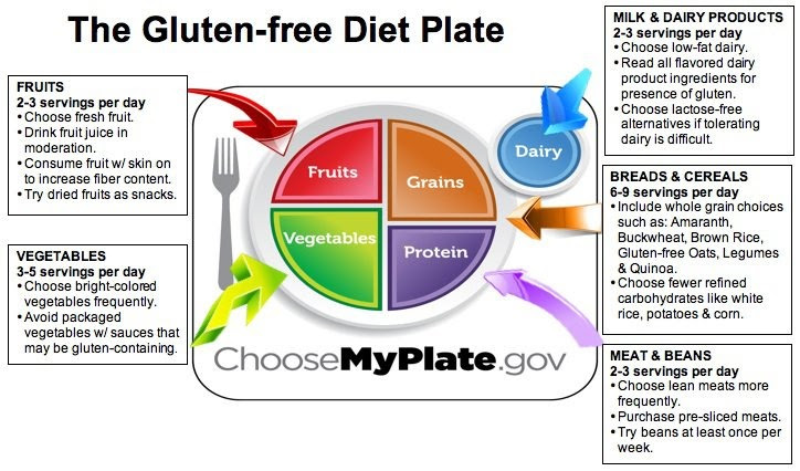 Gluten-Free Diet Broken Down | Gluten Free Is Life