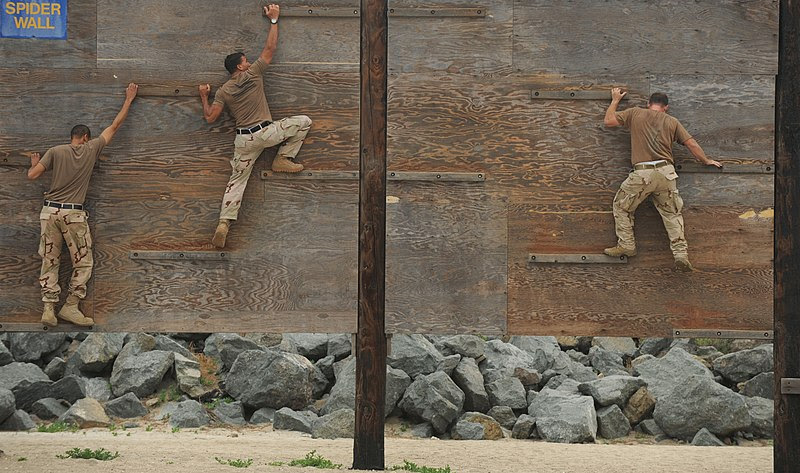 File:US Navy 100708-N-0775Y-106 Sailors ssigned to Fleet Combat Camera Group Pacific, crawl across narrow planks of wood to navigate the Spider Wall portion of the obstacle course.jpg