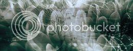 http://i757.photobucket.com/albums/xx217/carllton_grapix/blogtexturecarllton44a.jpg