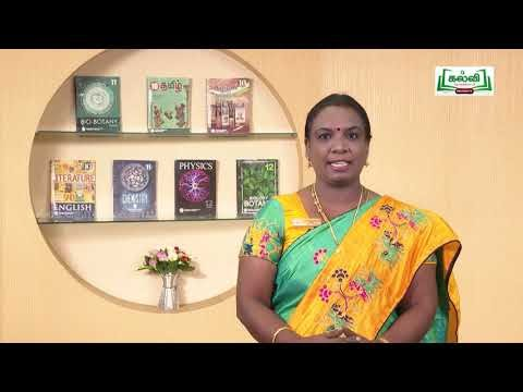 10th English Supplementary story The Aged Mother Q&A Unit6 Part1 Kalvi TV