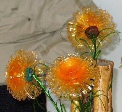 сами неувядающие цветы