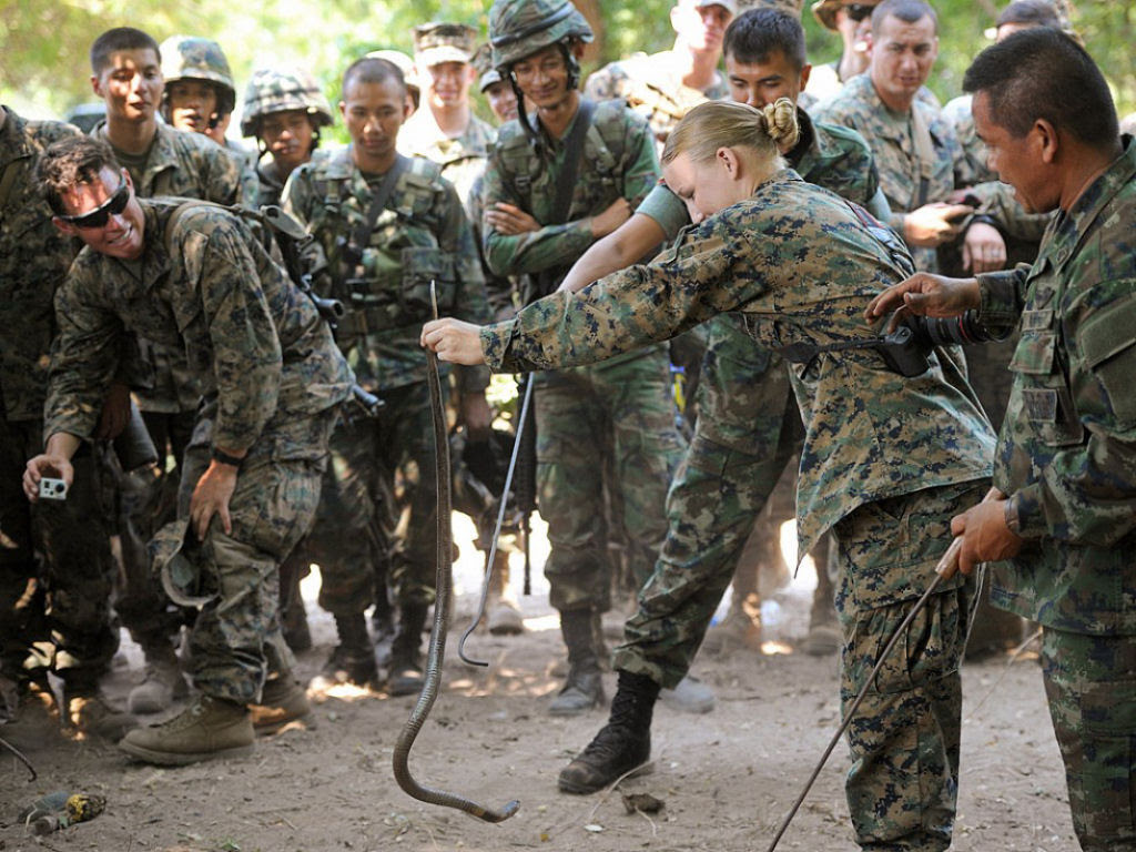 Cobra Gold 2013 - Militares sobrevivem com sangue de cobra na selva tailandesa 05