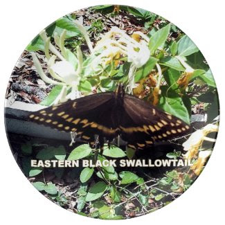 Black Swallowtail Butterfly Porcelain Plates