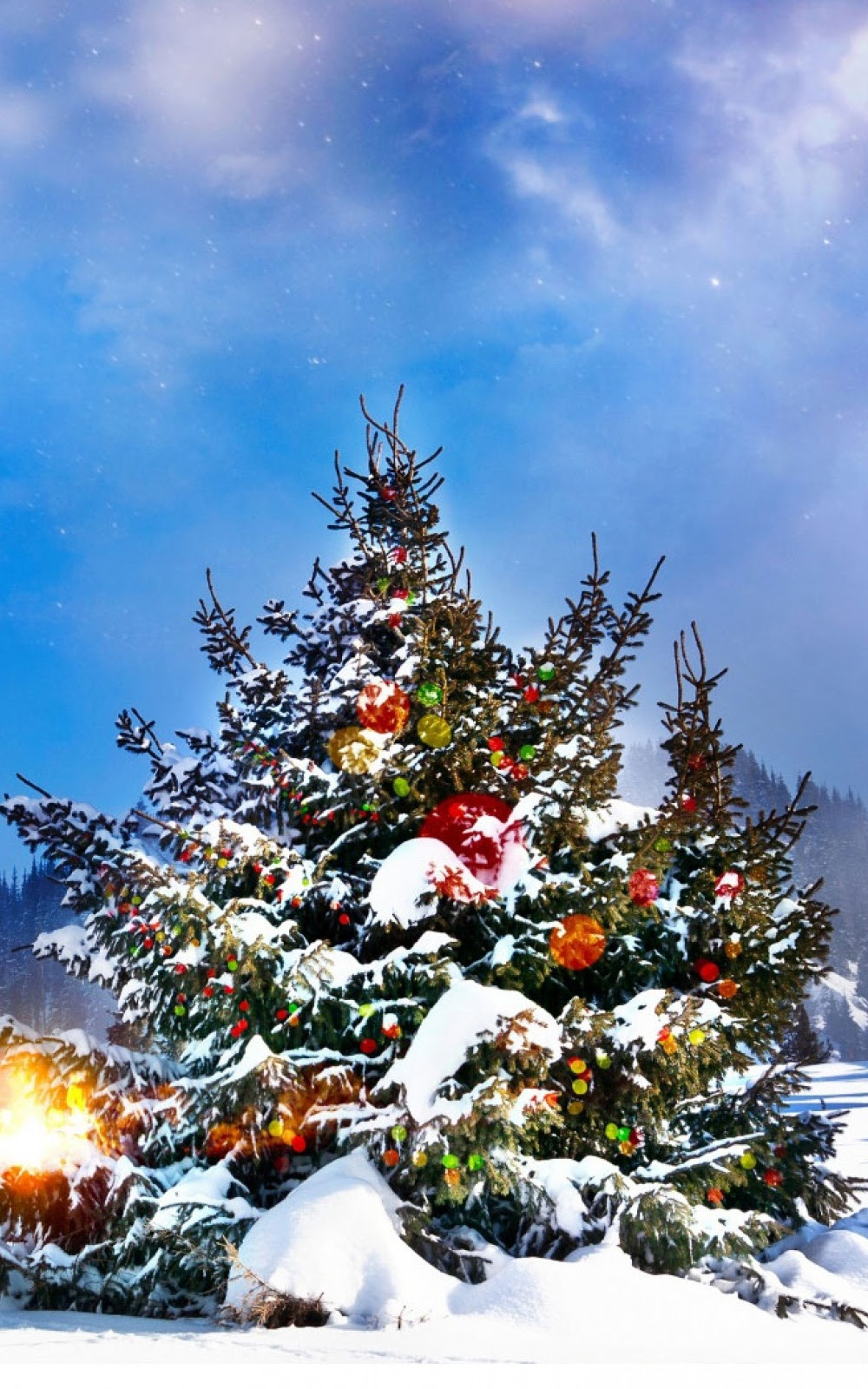 Christmas Trees Decorated Outside Mobile Wallpaper Mobiles Wall