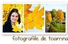 fotografii de toamna