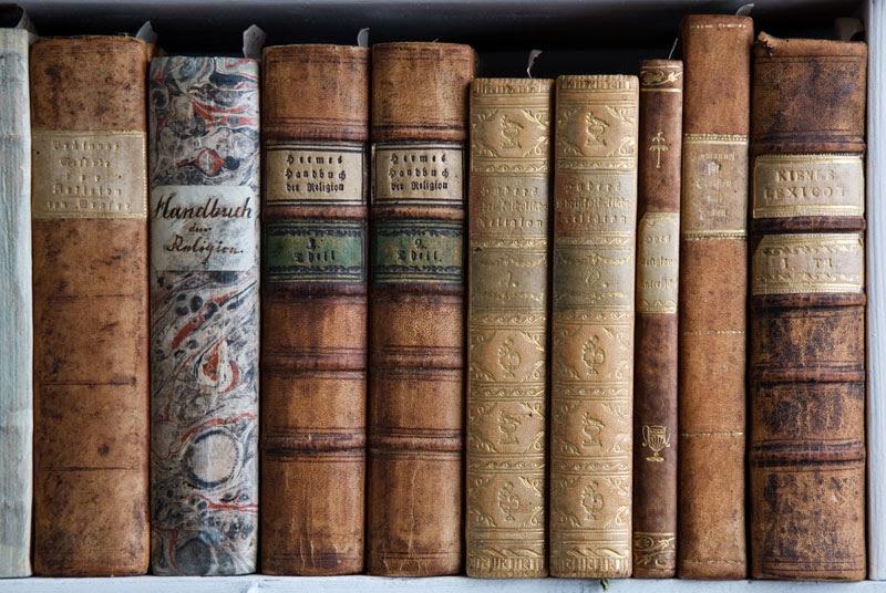 admont abbey monastery library austria (9)