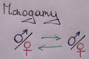 A schematic showing the monogamy relationship....