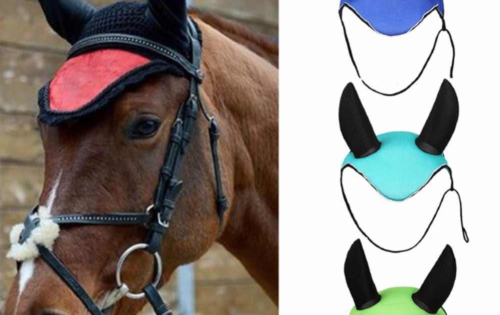 Diferentes versiones peinados para caballos Imagen de cortes de pelo tutoriales - Peinados Para Caballos De Equitacion - Peinado Hermoso