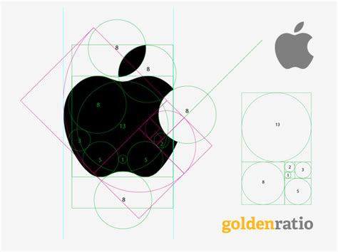 apple  golden ratio golden rectangle fibonacci sequence