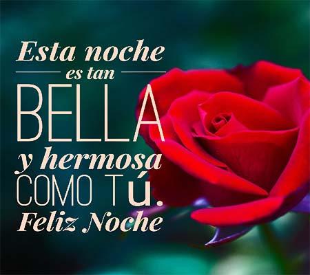 Imagenes De Rosas Rojas De Buenas Noches Rosas De Amor