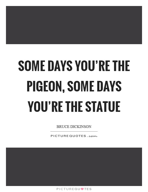 Some Days Youre The Pigeon Some Days Youre The Statue Picture