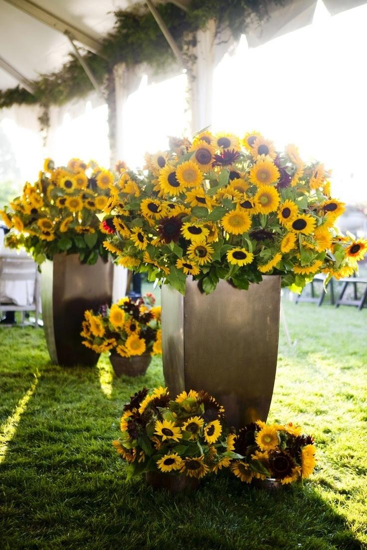 25 Sunflower Wedding Decorations Ideas - Wohh Wedding