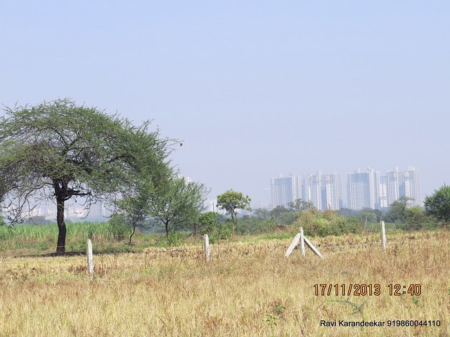 """Close up of Blue Ridge Hinjewadi from the site of upcoming project on Nande Mhalunge Road - Visit Amit Rujuta Ventures' """"Gloria"""" 1 BHK 1.5 BHK 2 BHK Flats at Nande near Hinjewadi on Pirangut Nande  Road Taluka Mulshi District Pune 412115"""