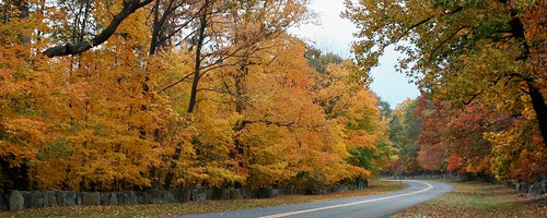 Autumn Along The Henry Hudson Drive by johnleesandiego