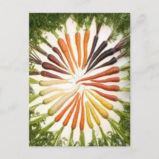 Rainbow Multicolored Carrots postcard