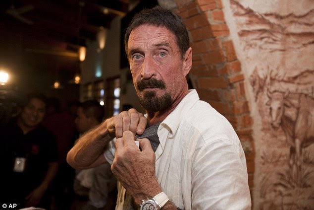 McAfee, pictured, claims the country and its leaders are unprepared for EMP weapons - and warned that gun crime should not be the 'single issue' that decided votes.