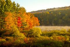 Vermont Autumn-05