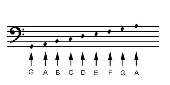 Colocación De Las Notas En El Pentagrama Clases De Guitarra