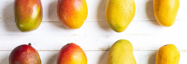 health benefits-of-eating-mangoes-how-to-strong-immunity-system-through-mangoes