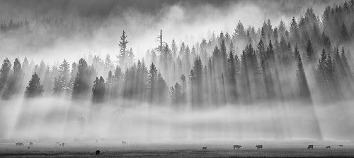 Smokey Sunrise por Jesse Estes