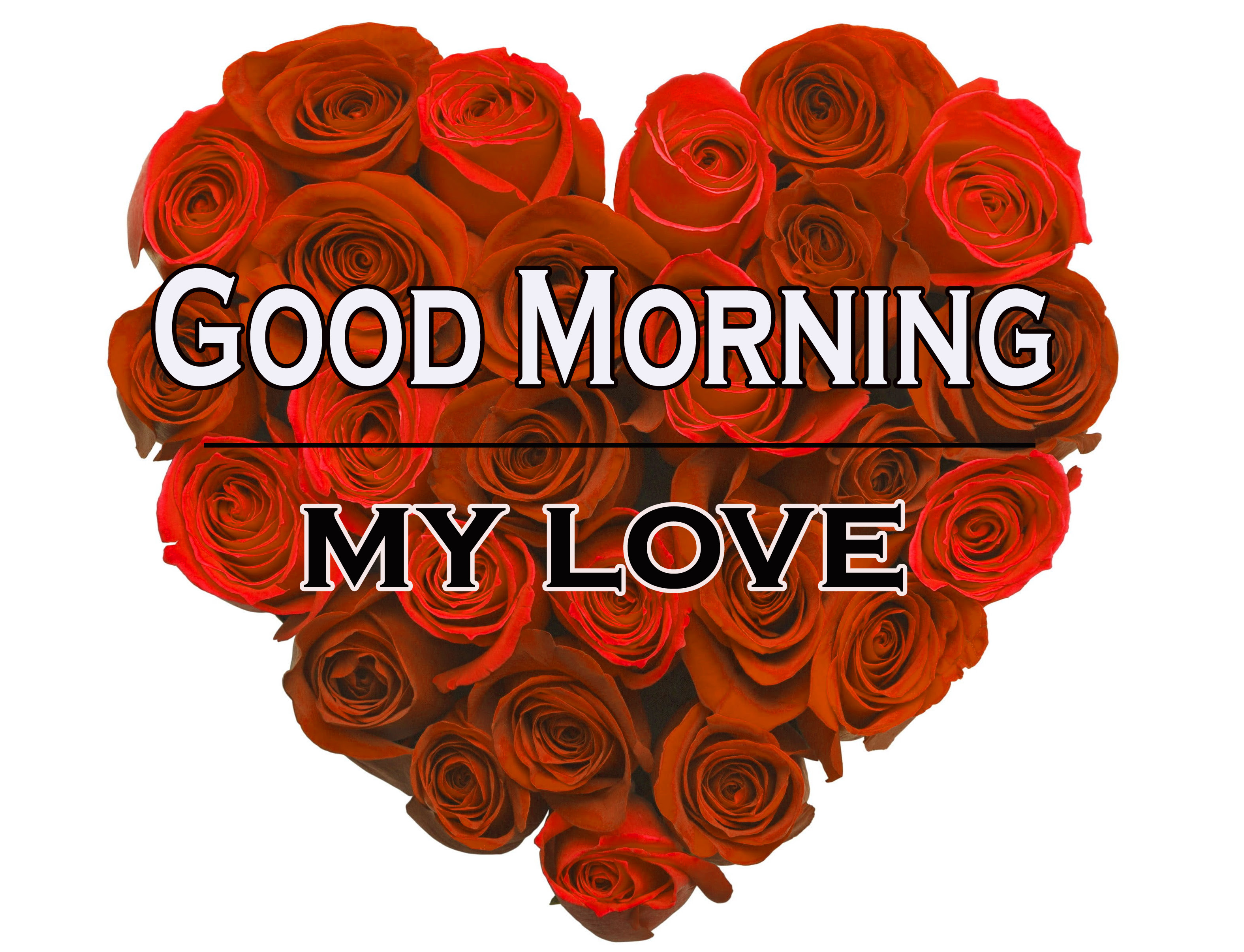 Morning Wishes Images With Red Rose 13